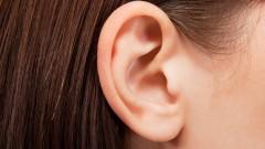 אוזן (צילום: אילוסטרציה)